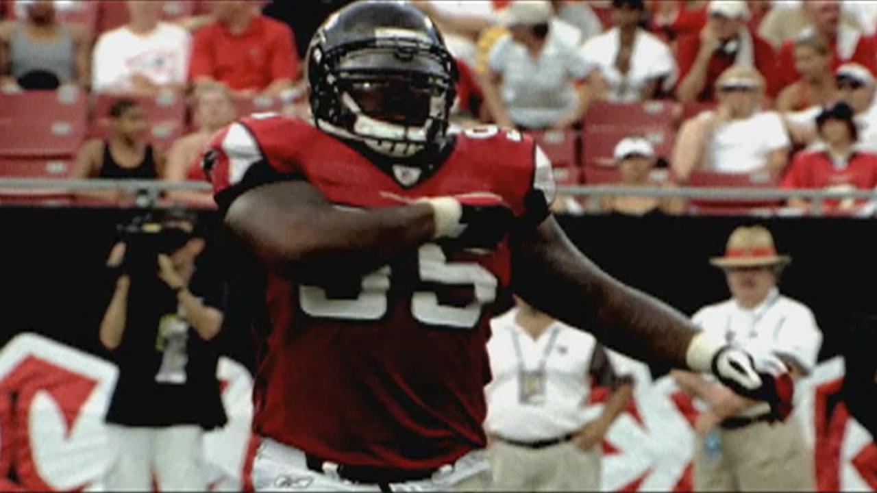 """Atlanta Falcons \""""Birds of Prey\"""""""